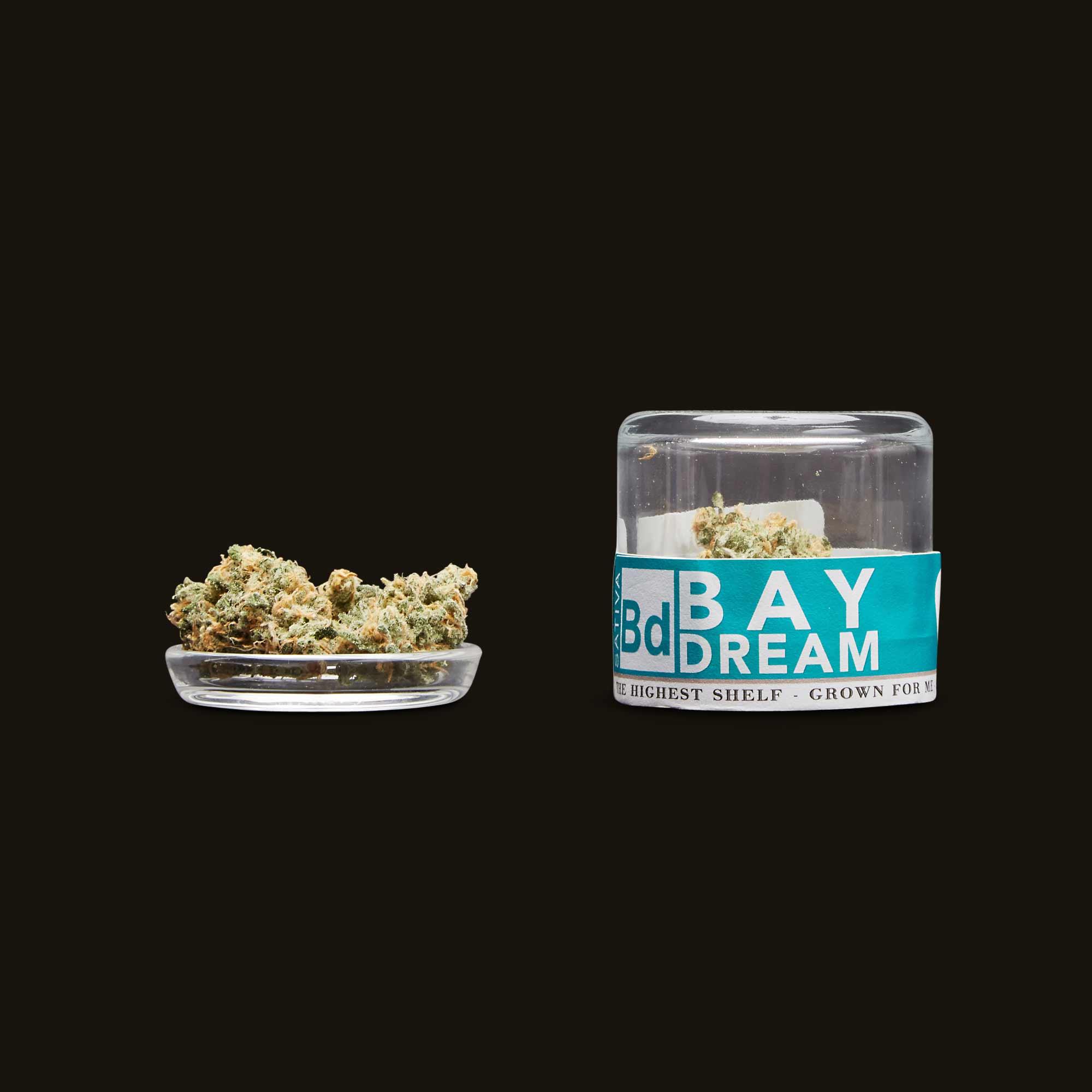Fifty Fold Bay Dream