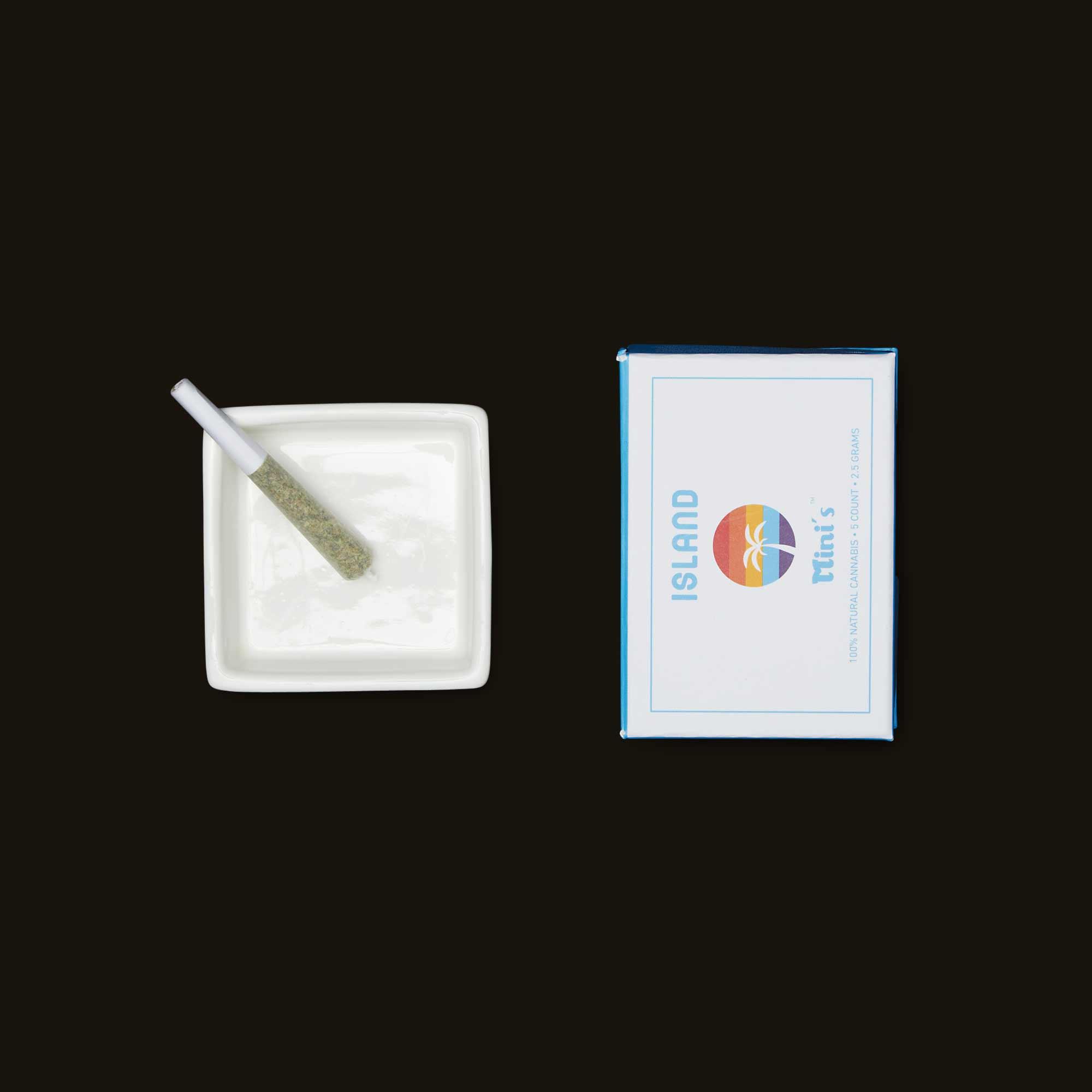 Island Super Silver Haze Mini's