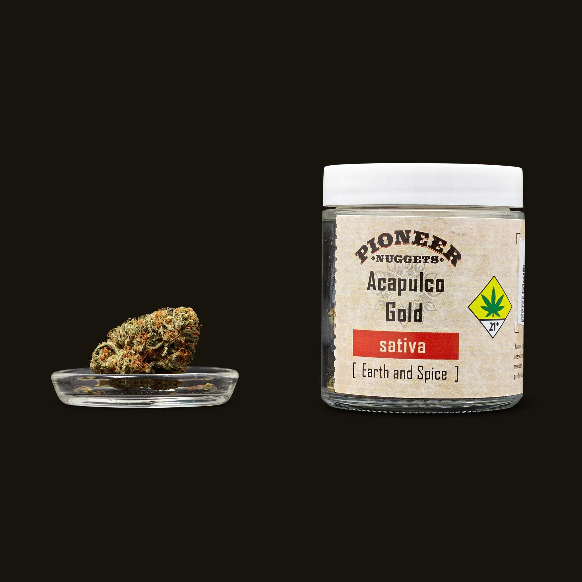 Pioneer Nuggets Acapulco Gold