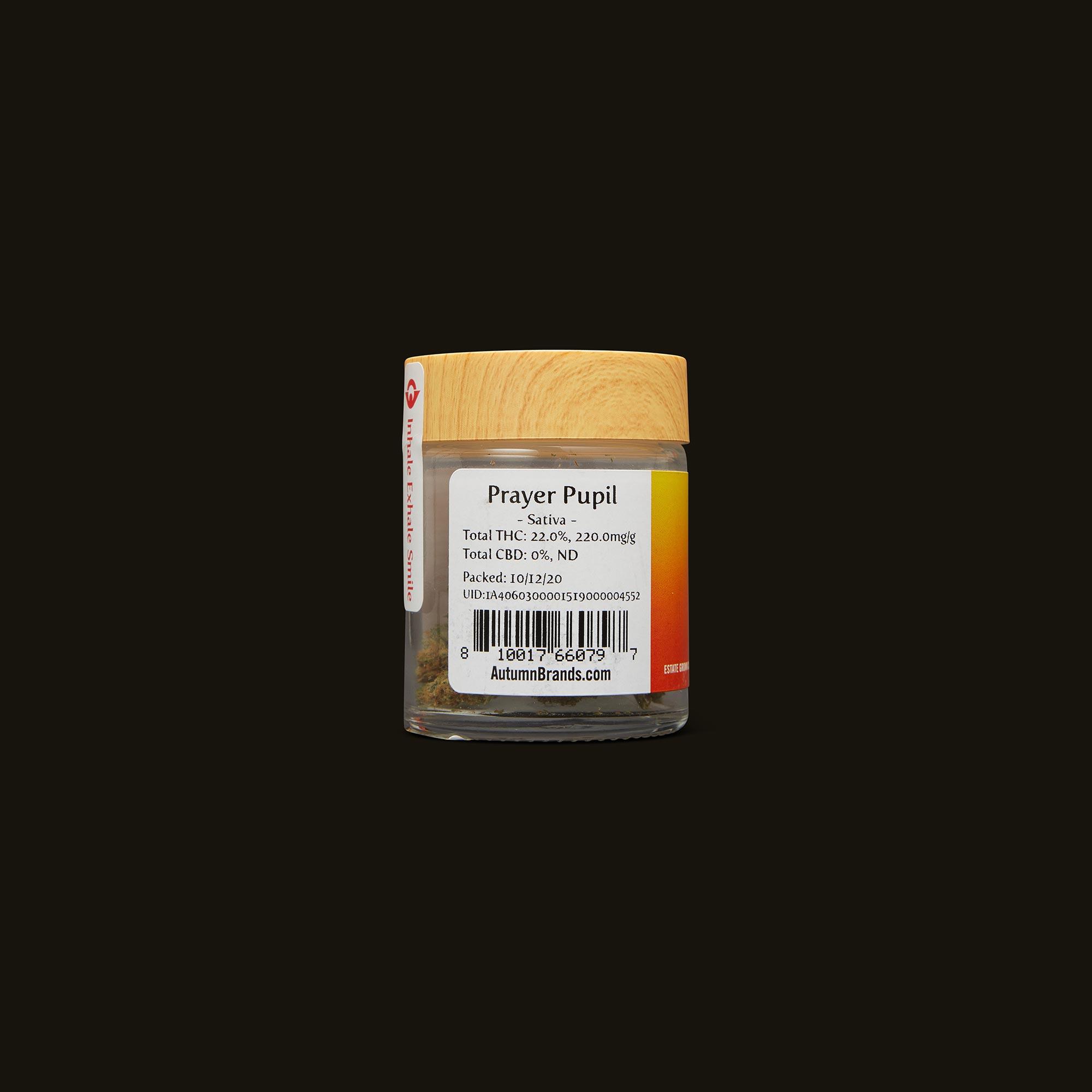 Autumn Brands Prayer Pupil Back Packaging